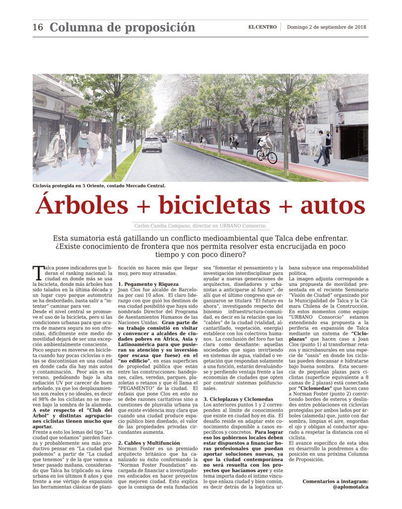 árboles bicicletas y autos